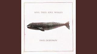 Soul Trees Soul Whales