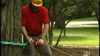 Tree Pulling Kit 5:1 Mechanical Advantage