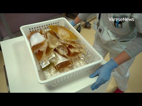 La ricerca sul plasma iperimmune all'ospedale di Varese