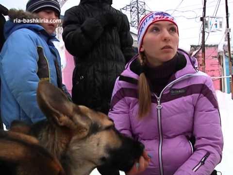 В Уфе больных детей будут лечить  общением с собак