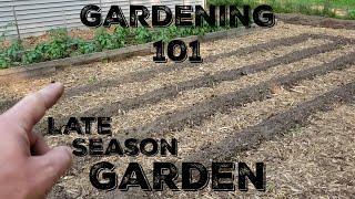 Gardening 101: Starting a Late Season Garden