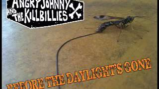 Angry Johnny And The Killbillies-Before The Daylight's Gone
