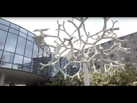 Creating Smart Cities: Solar Tree to charge your phone & provide WiFi
