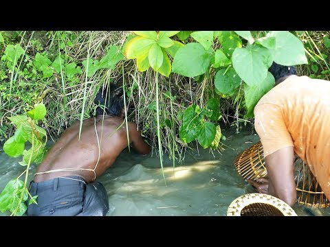 Traditional Fishing by Polo। Best Fish Catching