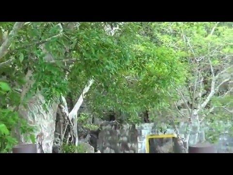 Fiji 2016 - Jan and Ligaya's Holiday, Part 1