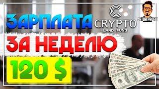 Как зарабатывать по 120$ в неделю в интернете? Заработок на инвестициях в cryptoland  / #ArturProfit