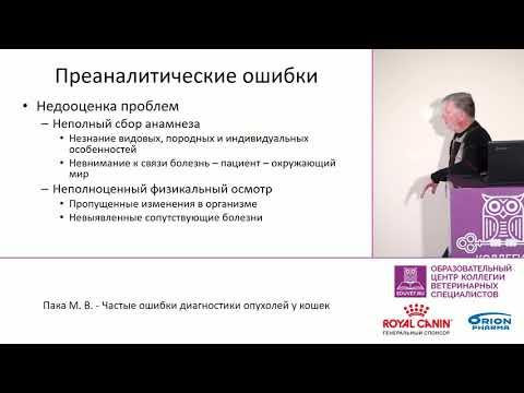 Пака М. В. - Частые ошибки диагностики опухолей у кошек