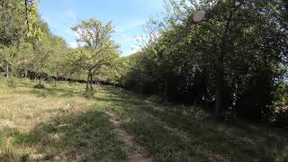 RAW GOPRO 7 BLACK FPV