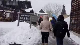 Enchanting Winter Walk Around Shirakawa-go Village: Experience a fairytale winter