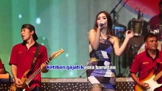Download lagu Nella Kharisma Ada Gajah Dibalik Batu Mp3