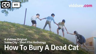 How To Bury A Dead Cat - Will This Cat Make It To Heaven? // Viddsee Originals