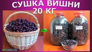 Сушка вишни – 20 кг.