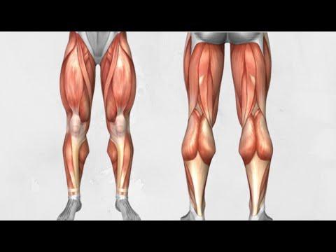 Interiorul genunchiului doare