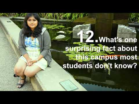 21 Questions With a Banana Slug