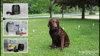 Top 5 Best Invisible Dog Fences under $300