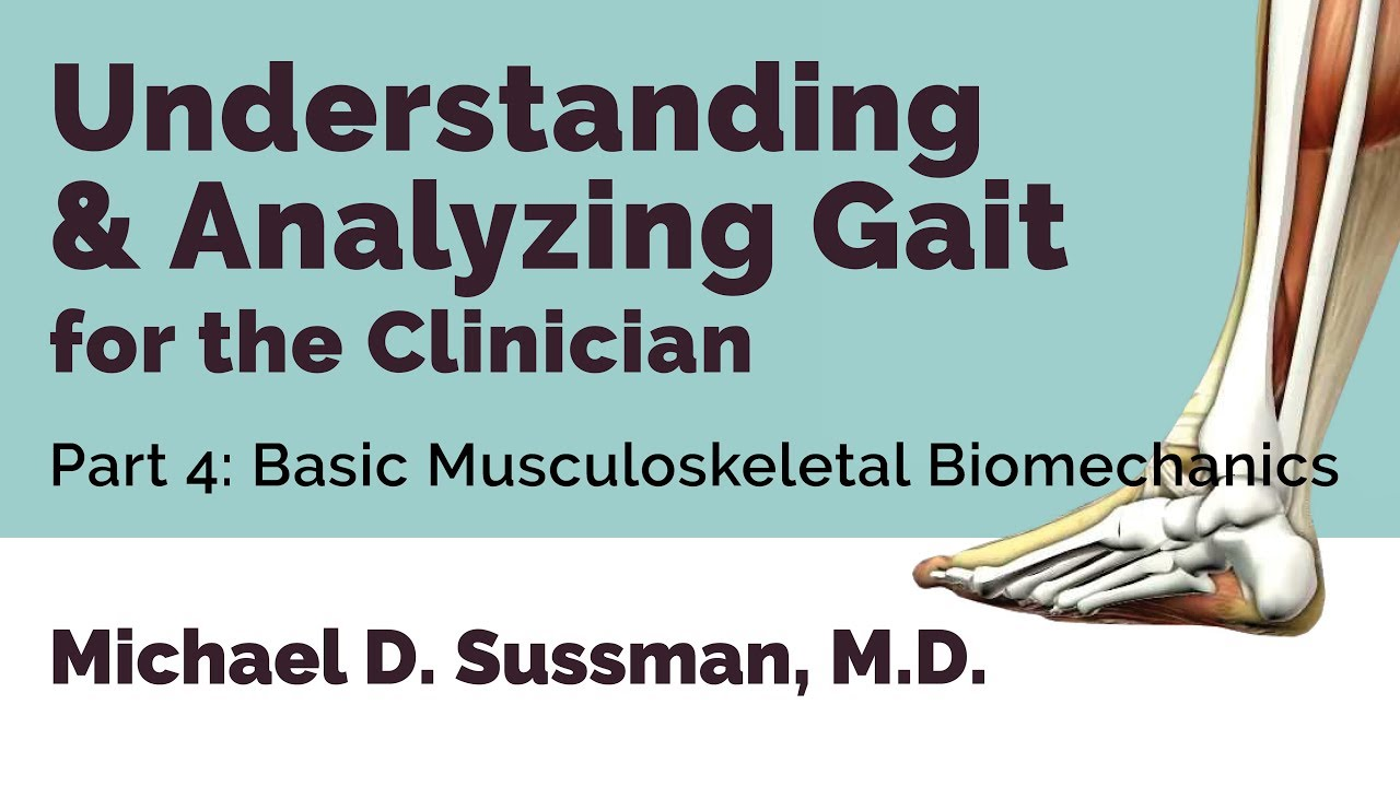 Understanding & Analyzing Gait For The Clinician: Part 04 [Basic Musculoskeletal Biomechanics]