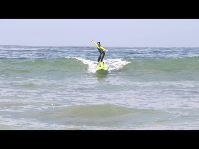 Surfing all in One