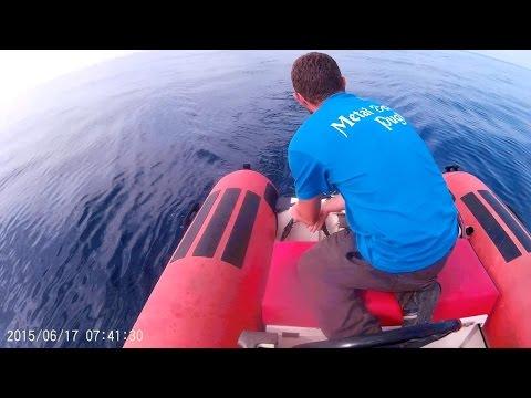 Medvedev su fishings