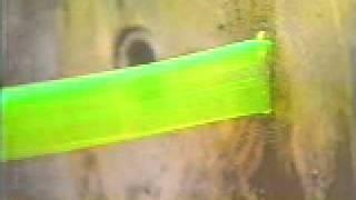 Slinky: plastic slinky
