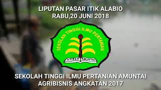 preview picture of video 'Kegiatan pemasaran dipasar itik Alabio kabupaten Hulu Sungai Utara'