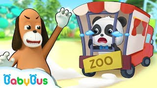 Mr.Dao Wanna Send Baby Panda to Zoo | Magical Chinese Characters | Panda Cartoon | BabyBus