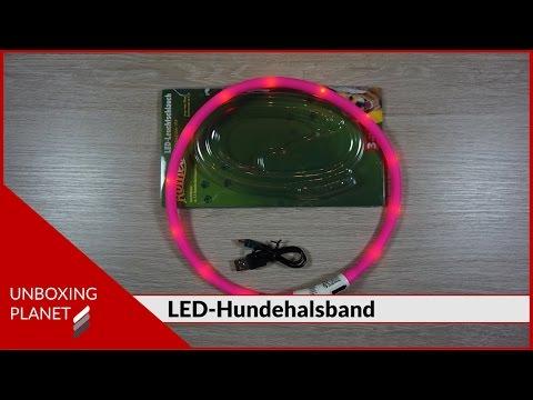 LED-Hundehalsband kürzbar - Unboxing Video