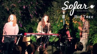 Big Tree - My How You've Grown | Sofar San Francisco