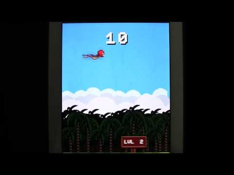 Video of Super Flappy Squirrel
