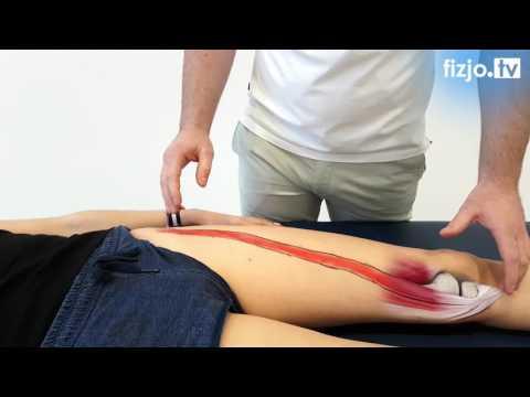 Mięśni unieruchomiony