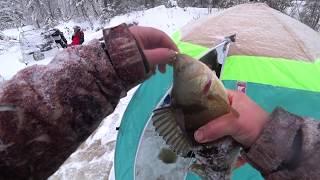 Форум рыбалка в ханты мансийске