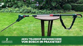 Bosch Akku Teleskop Heckenschere UniversalHedgePole 18 im Test