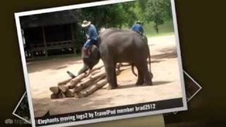 preview picture of video 'Lampang and the Elephant Refuge Brad2512's photos around Lampang, Thailand (lampang elephant)'