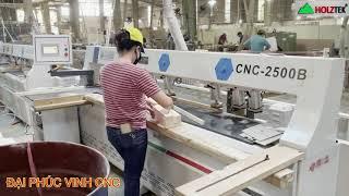MÁY KHOAN NGANG CNC HOLZTEK 2500B vs B2 tại Cty Gỗ Xuất Khẩu Bình Dương
