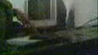 Video piano ala 3sk4