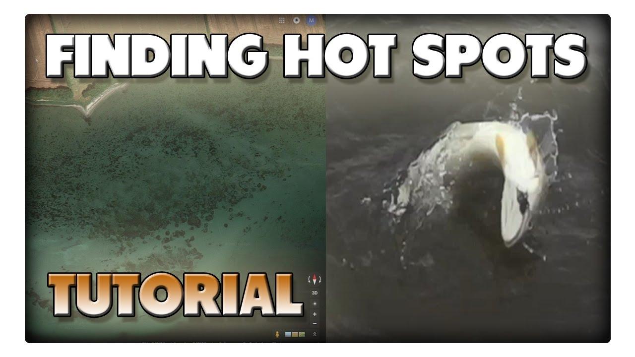 Meerforellen hot spots - Wie findet man einen guten Angelplatz?