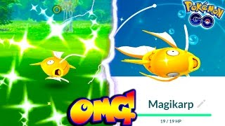 Magikarp  - (Pokémon) - CATCHING A SHINY MAGIKARP IN POKEMON GO! FINALLY GOT ONE! + When Will More Shinies come to PGO?