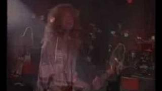 Damn Yankees - High Enough (live)