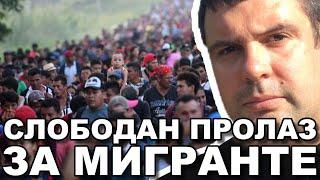 Zapadne NVO transportuju migrante kroz Srbiju ! Dragoslav Ljubičanović