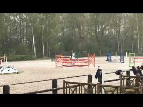 ! A VENDRE ! Poney de GRAND PRIX