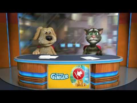 video de risa gatito tom y su amigo