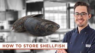 How to Store Shellfish