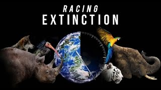 The 5 Major Extinctions Of This Planet - Racing Extinction