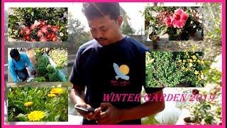 Winter Garden 2019