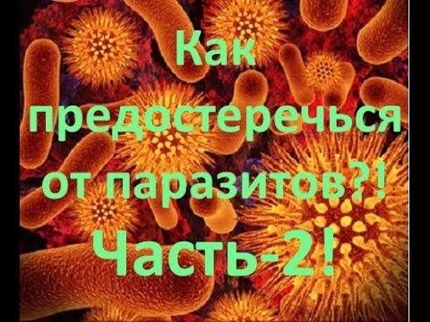 Сколько глисты могут жить в организме человека