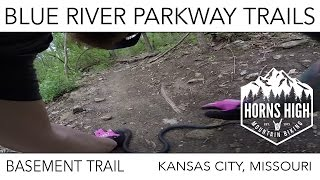 BASEMENT TRAIL  |  SNAKES ON A TRAIL!!