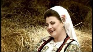 Steliana Sima Mi A Ghicit O Vrajitoare . Videoclip Original , BIG MAN