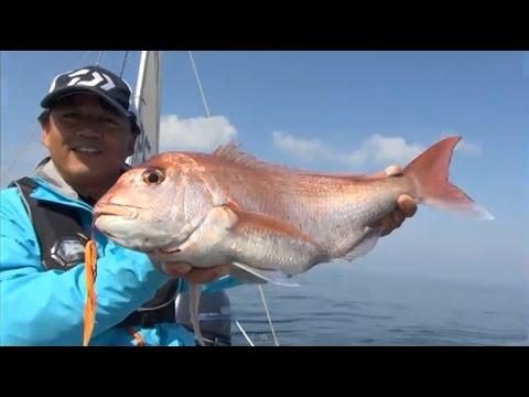 タイラバで鯛を釣る