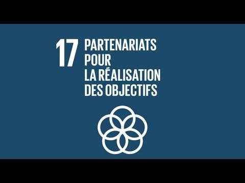 ODD 17: PARTENARIAT POUR LA REALISATION DES OBJECTIFS