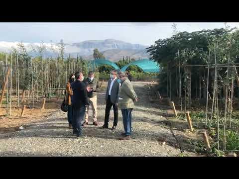 Visita al Vivero Provincial para seguir trabajando en las nuevas líneas del programa ambiental Málaga Viva y las arboladas