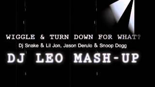 Turn Down For What & Wiggle - DJ Snake & Lil Jon | Jason Derulo & Snoop Dogg (Dj Leo Mash-Up